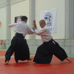 George Margaritis, 4th dan, Aikido South Athens