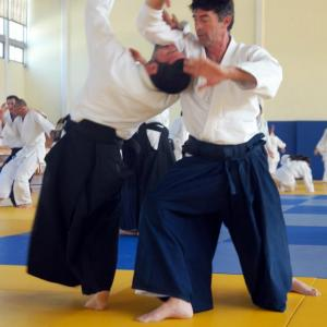 Φίλιππος Αθανασίου, 4th DAN, Aikido of Piraeus Association.